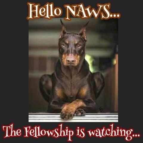 hello naws